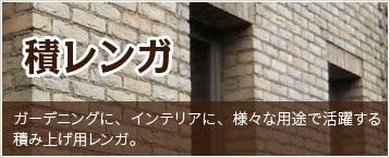 mainbn1